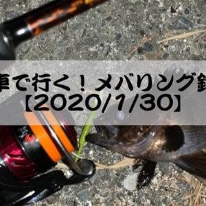電車で行く!メバリング釣行【2020/1/30】