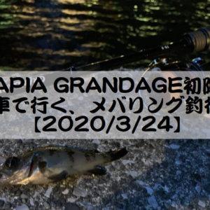【APIA GRANDAGE初陣】電車で行く、メバリング釣行記【2020/3/24】