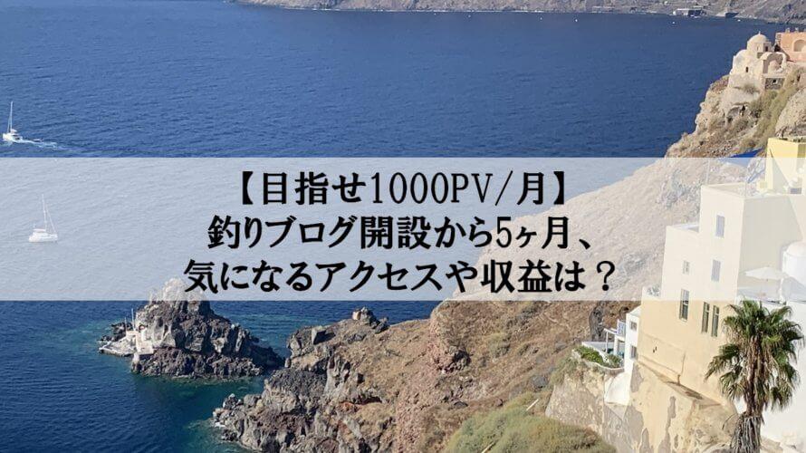 【目指せ1000PV/月】釣りブログ開設から5ヶ月、気になるアクセスや収益は?