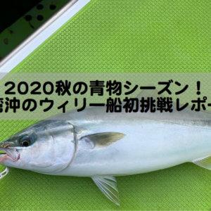 2020年秋の青物シーズン!東京湾沖のウィリー船初挑戦レポート!
